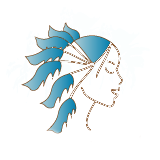 vensara logo